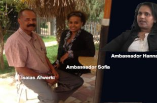 Eritrean News - Latest Update on Eritrea - Awate