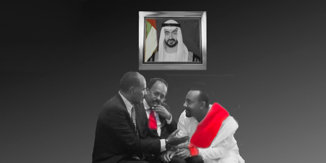 The UAE and the Horn of Africa Threesome