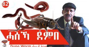 Negarit 82: ሓሰኻ ደምበ – Dung Worm – دودة الروث
